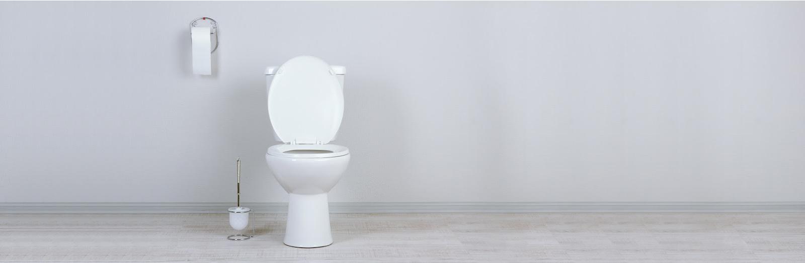 Toilet plaatsen of renoveren
